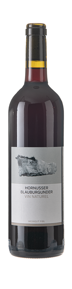 Blauburgunder Vin Naturel